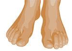 toes illustration w academic kids description