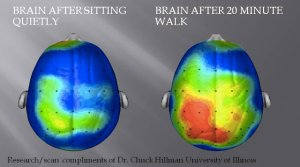 Gait happy brain and walking