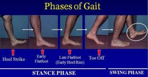 Gait Stance Phase Feet on Ground