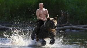 Gait famous peeps Putin  on a bear